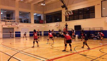 volleyball photo 1